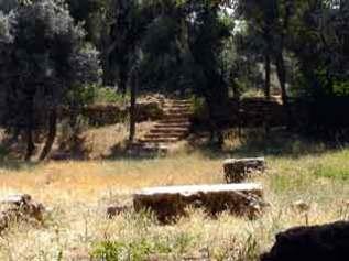 Jardim com ruîas da Academia de Platão - Atenas(2005)
